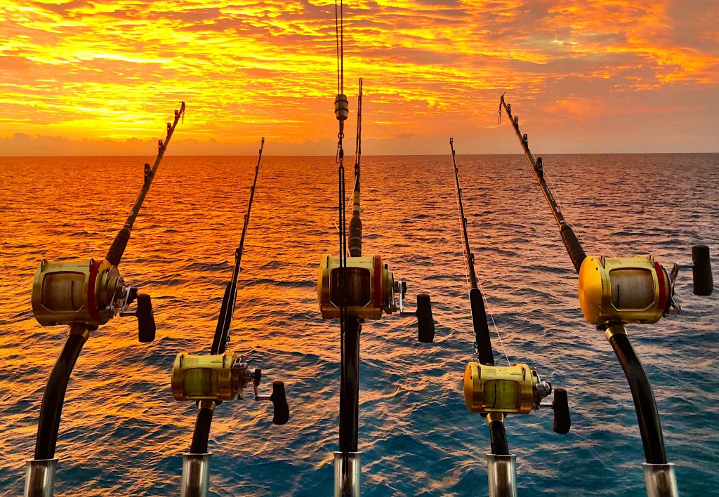 Giant black marlin charters Topnotch Game Fishing Cairns
