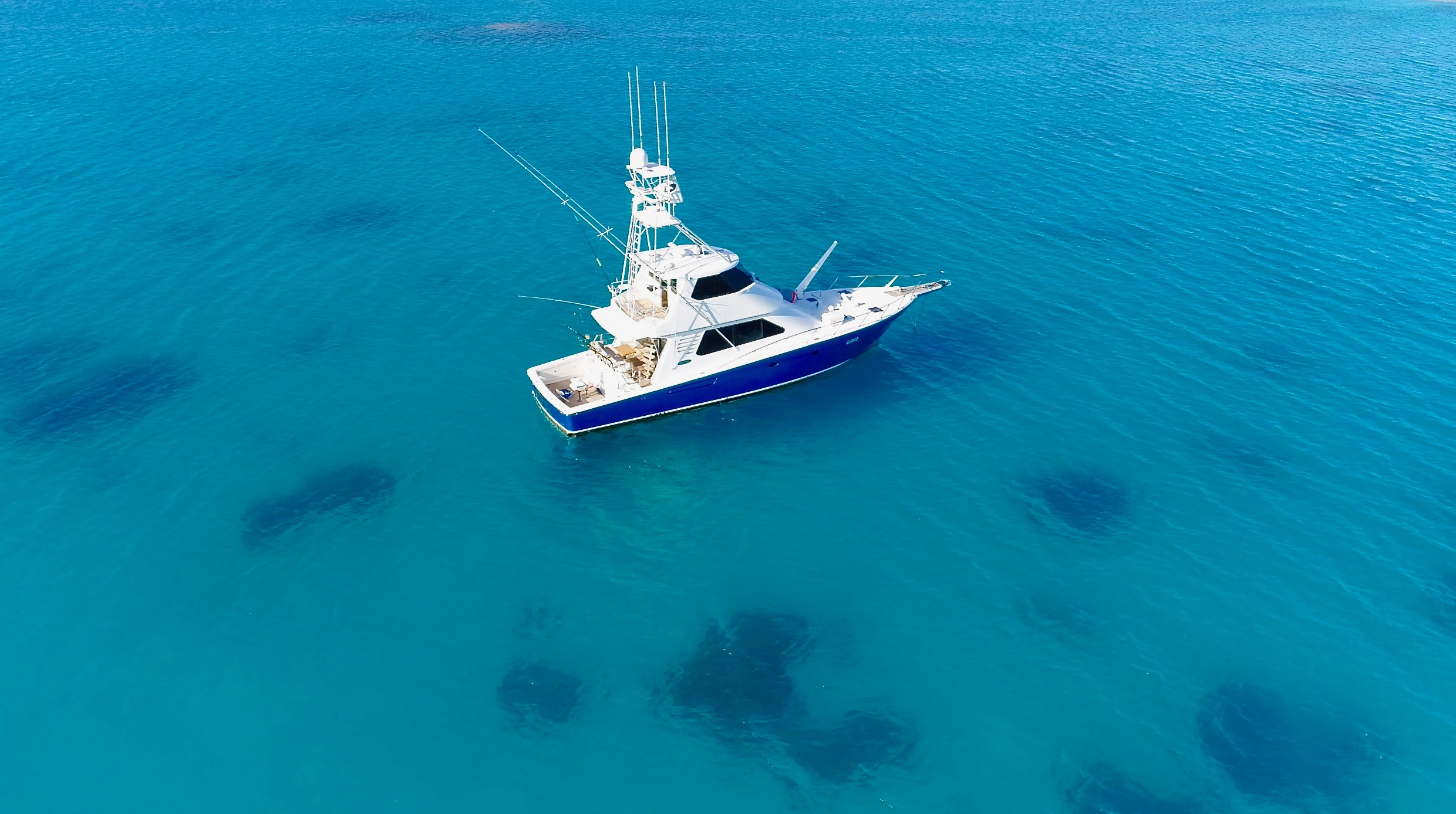 Brilliant Company Topnotch Game Fishing luxury charters airlie Beach whitsundays our destinations
