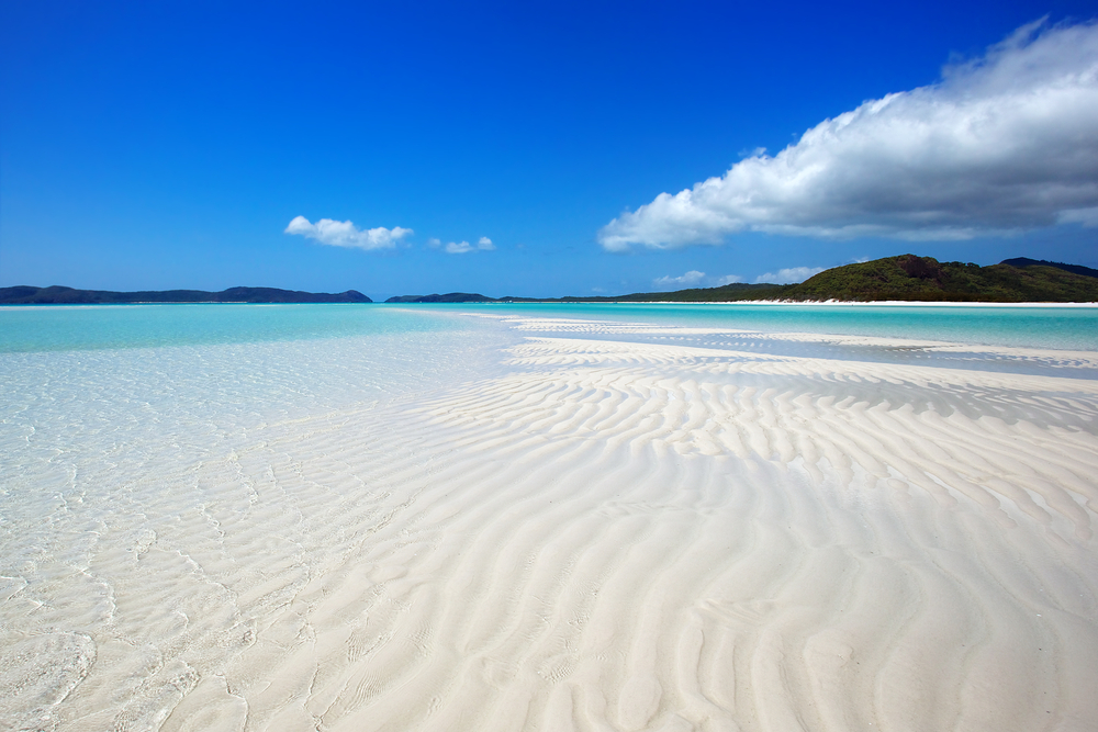 whitehaven beach and go fishing